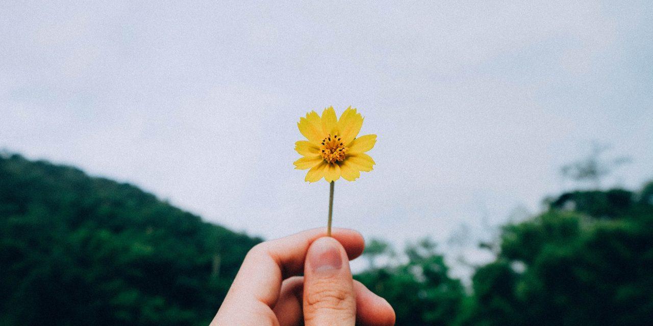 Vaali hyviä asioita sen sijaan, että jättäisit onnen sattuman varaan