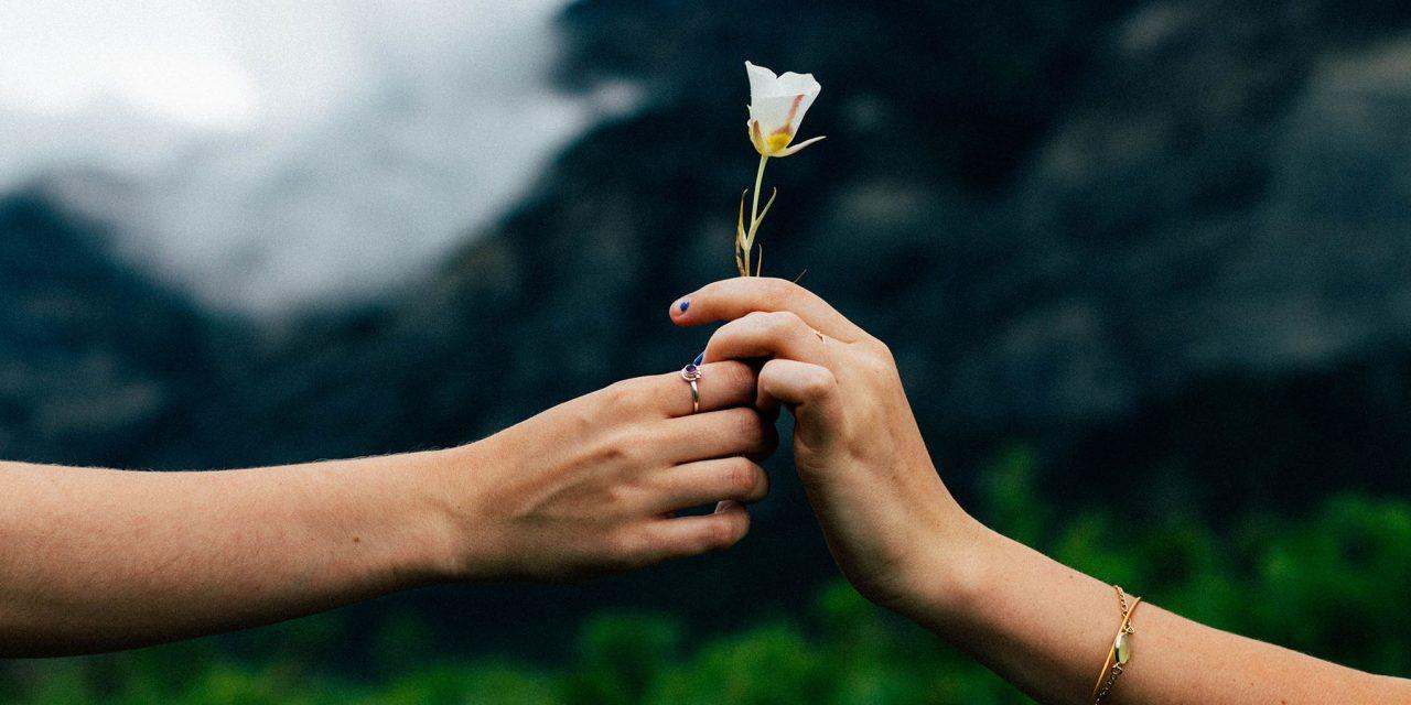 Miia Paakkanen: Tunnetaidot vahvistavat sosiaalista anteliaisuutta
