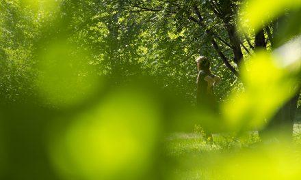 Luonto vapauttaa työläisen